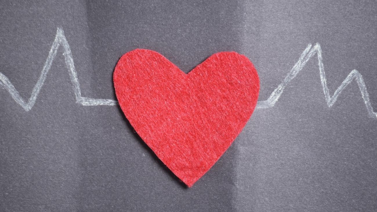 Heartbeat Chart member experience