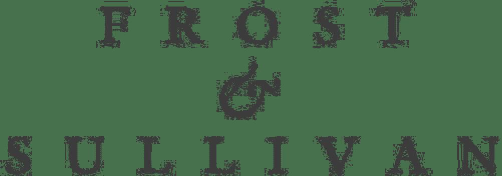FS logo 2